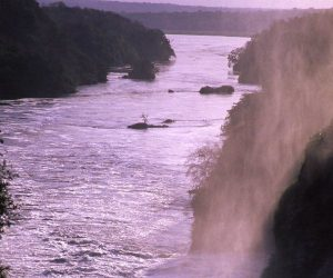 5 things to do in Murchison Falls National Park