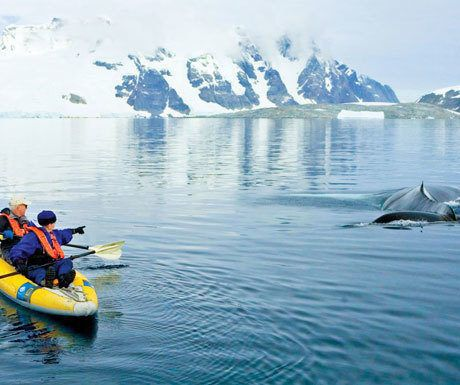 The perfect distinctive experiences in Antarctica