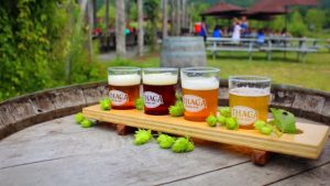 12 of the Best Brewery Experiences in New York State