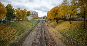 Fallen leaves are causing subway delays in Toronto