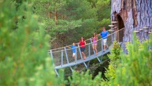 Where to Celebrate Father's Day in New York State