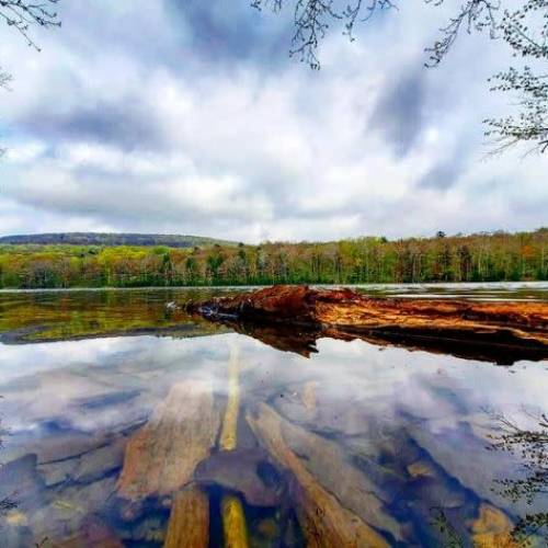 3 of the Best Hikes in Delaware & Sullivan Counties in the Catskills