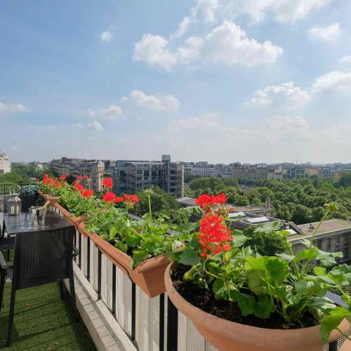 One-Bedroom Apartment for Sale with Breathtaking Views of Paris