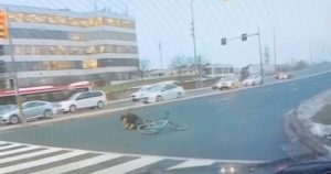 Graphic video shows car hitting a cyclist in Markham
