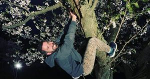 Man who climbed High Park cherry blossoms in middle of the night fined by Toronto Police