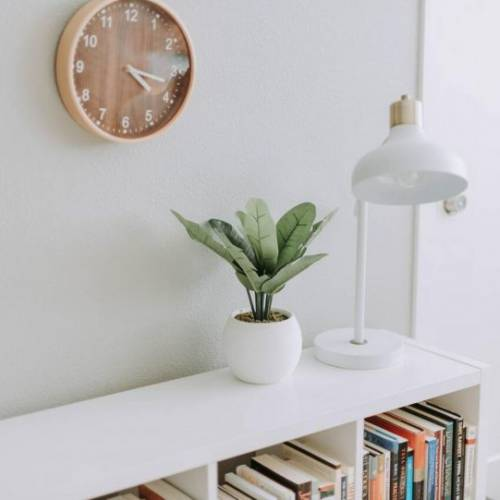 Should You Rent Out Your Apartment Furnished or Unfurnished? 20 Reasons to Consider