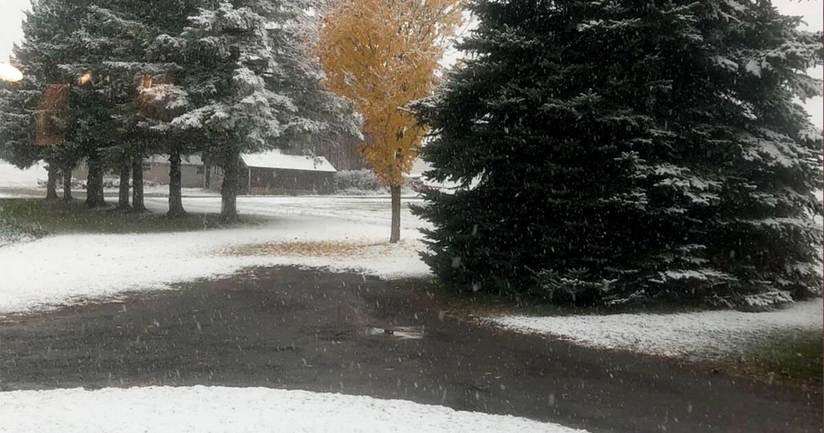 Snow is falling in Ontario and creeping closer to Toronto