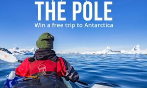 Win a Trip to Antarctica with Intrepid Travel