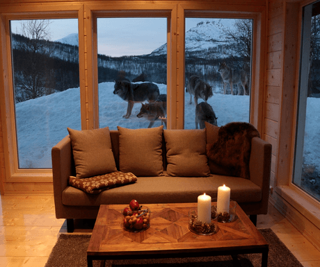 5 of the very best accommodations in Arctic Europe
