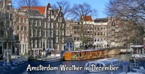 Amsterdam weather in December