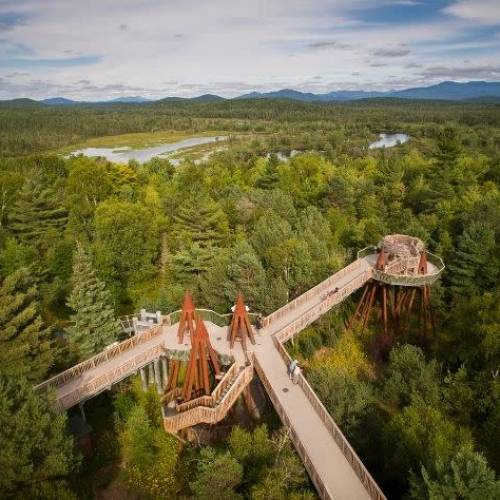 12 Eco-Friendly Activities to Include in Your New York State Vacation
